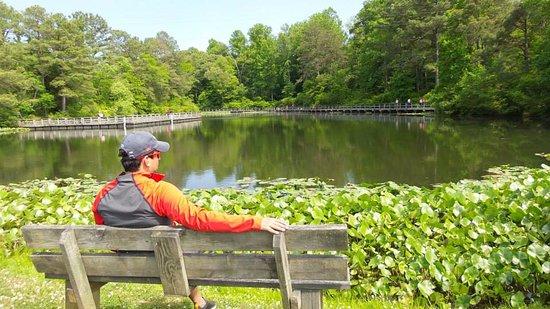 Gladstone, VA: Amazing beauty of trail