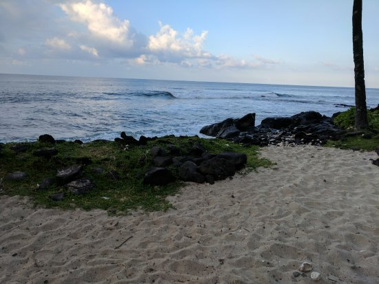 Hale Kona Kai Condominiums: Sunrise at Honl's Beach (short stroll south of HKK Condo)