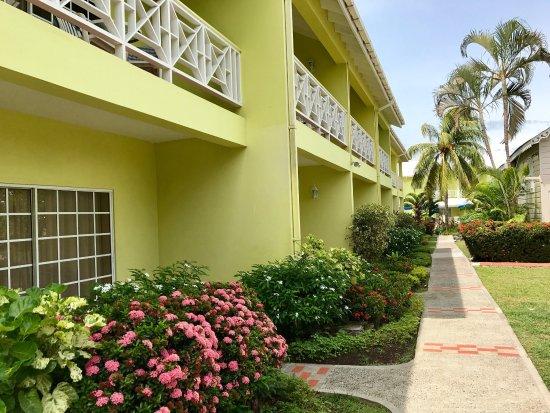 Bay Gardens Hotel: photo2.jpg