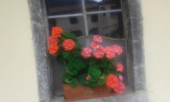 Serina, Italy: Un piccolo particolare: una finestra fiorita; e, nel vetro, il riflesso del chiostro