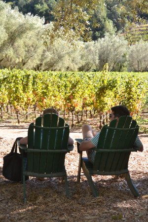 Eclectic Tour: Eclectic found us this kind of tasting experience, beautiful, relaxed and secluded.