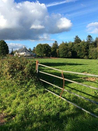 Mountshannon, Ireland: Sunrise B&B from town