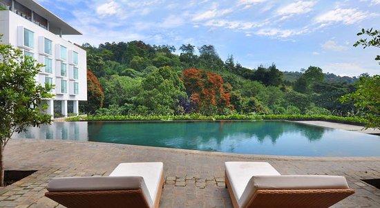 Padma Hotel Bandung: Seneng banget bisa nginep di hotel ini. Hotelnya nyaman dan asri banget!