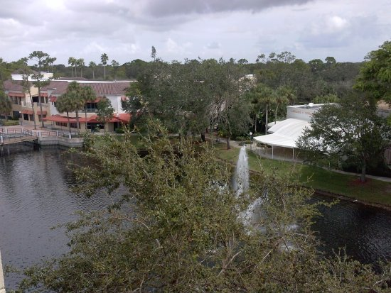 Hilton Boca Raton Suites: View of Small Lake from Hotel Room Balcony