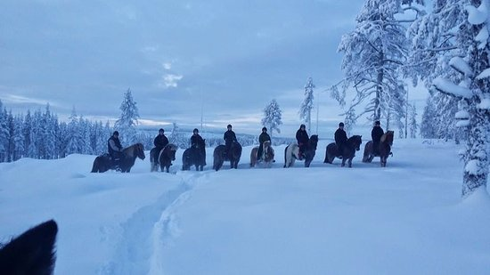 Gallivare, Szwecja: Or why not go on horseback in lovely winterland