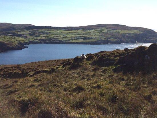 Footfalls Walking Holidays: on Dursey Island