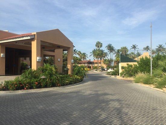Divi dutch village beach resort updated 2017 prices for Divi dutch village