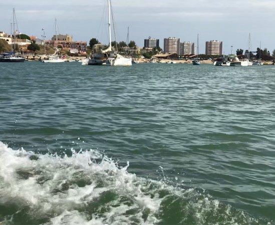Trigana Boat Trips: photo1.jpg