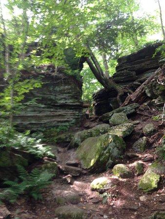 Panama Rocks Scenic Park: photo0.jpg