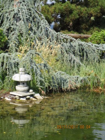Ikeda Japanese Garden: Soothing colors.