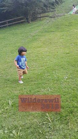 Wilderswil Photo