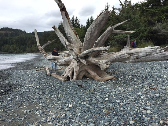 Sooke, Canada: photo2.jpg
