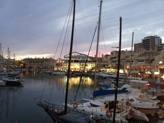 Toro Puerto Marina: 20131117_182125_large.jpg