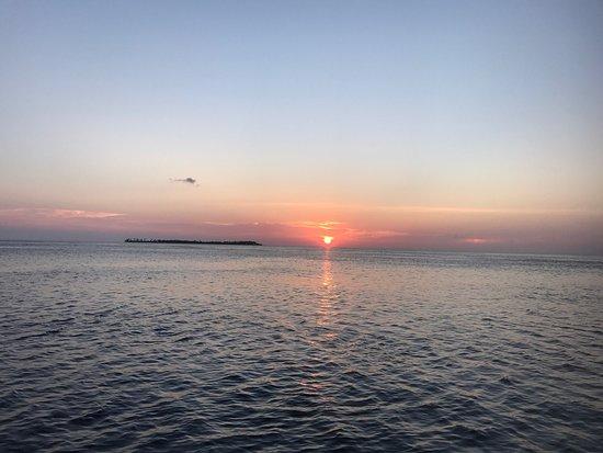 Wakatobi Dive Resort: photo4.jpg