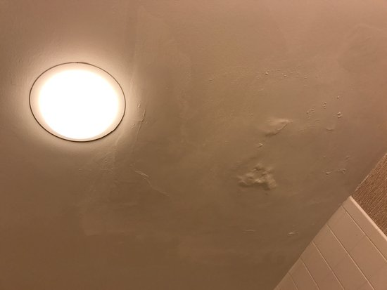 Pittsburgh Marriott City Center: Bathroom ceiling had some water damage