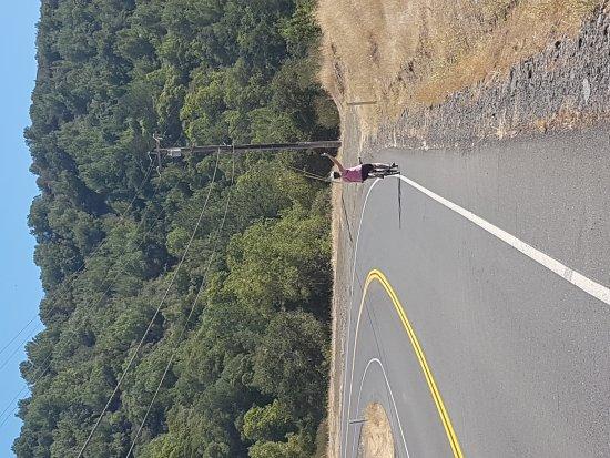 Napa Valley Bike Tours : 20170921_115622_large.jpg