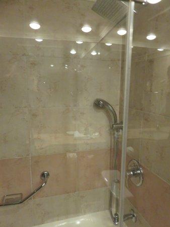 Renaissance Tel Aviv Hotel: Shower