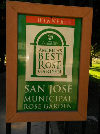Municipal Rose Garden San Jose Ca Reviews Top Tips