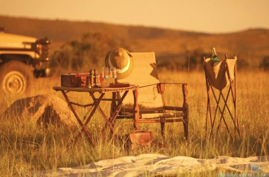 Full-Day Kruger Wildlife Safari from...
