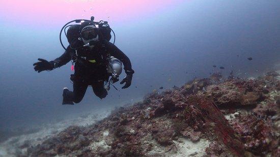 Rawai, Tailandia: Phuket Diving