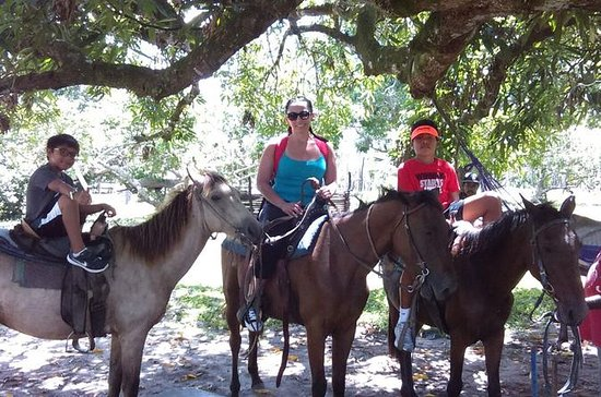 Horse Back Riding and Howler Monkey...