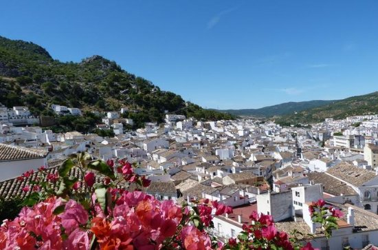 Private Day Trip from Málaga: The...