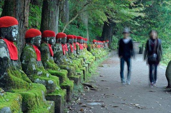 Private Nikko Tochigi Tour from Tokyo...