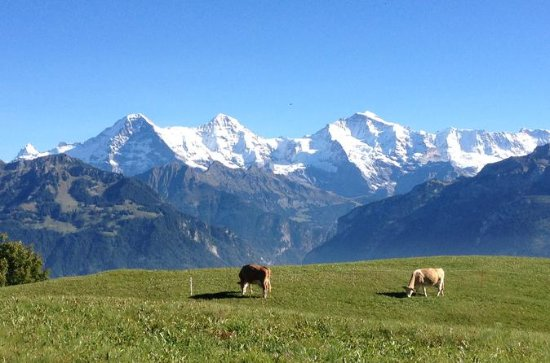 Private Tour Interlaken und Jungfrau...