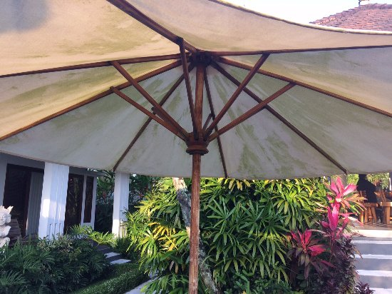 The Samara: Poolside Umbrella