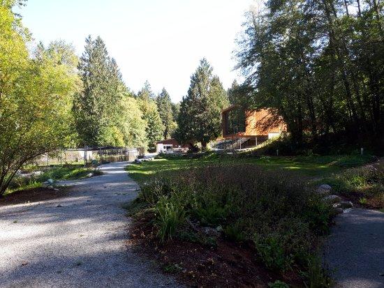 Kanaka Creek Riverfront Trail: Fish hatchery