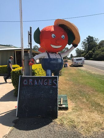Gayndah, أستراليا: photo1.jpg
