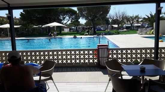 Camping Emporda: Het nieuwe zonneveld aan het zwembad