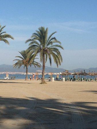 Blue Sea Costa Verde: photo1.jpg