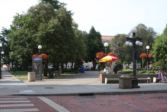 Landmark Center: Rice park across the street from the main entrance.