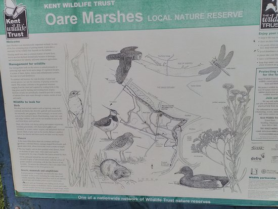 Message board at Oare Marshes