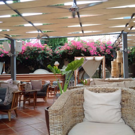 Napa Plaza Hotel: outside coffee area