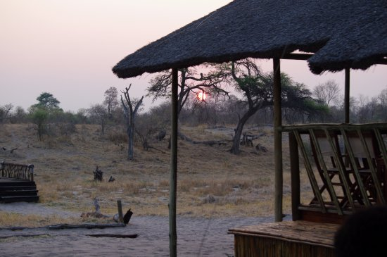 Camp Savuti Foto
