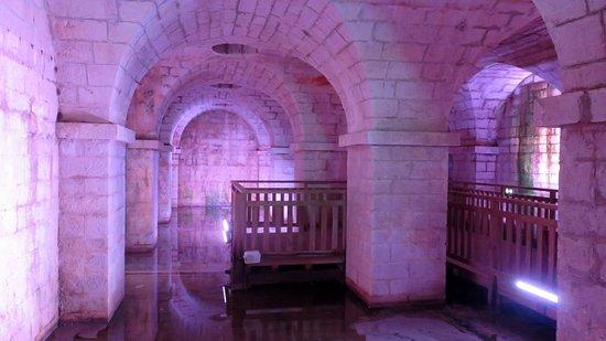 Salies-de-Béarn, Francia: la crypte de la source salée