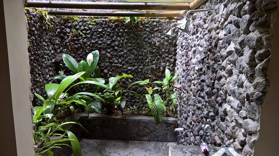 Lost Iguana Resort & Spa: The open shower. We tried to seal the largest gap in the screen with a towel
