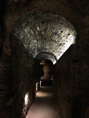 Cantina de' Ricci: photo1.jpg