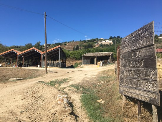 Nh Villa San Mauro Tripadvisor
