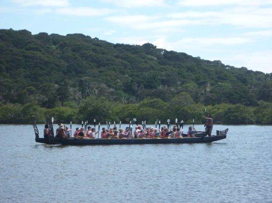 Taiamai Tours Heritage Journeys: Waka Paddling Fun