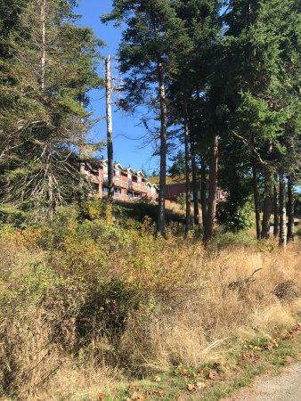 Tsa-Kwa-Luten Lodge: photo2.jpg