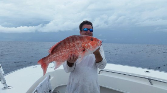 TailHunter Hilton Head Fishing Charters