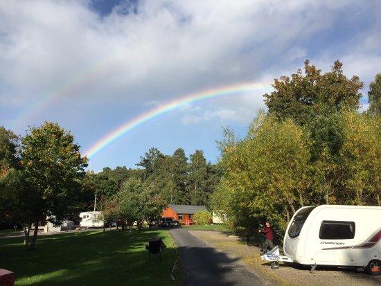 Rothiemurchus Camp and Caravan: photo2.jpg