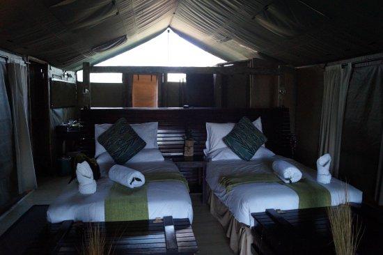 Pom Pom Camp Bild