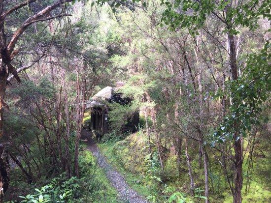 Nelson-Tasman Region, New Zealand: photo1.jpg