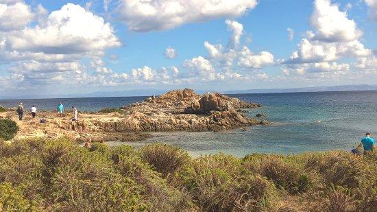 Asinara, Italy: Cala Giordano