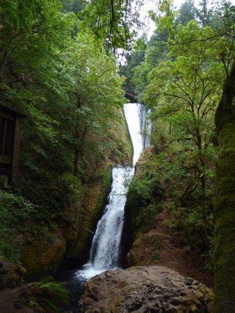 Corbett, OR: Falls