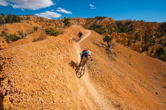 Mountain biking Utah's Thunder Mountain. Photo: Scott Markewitz
